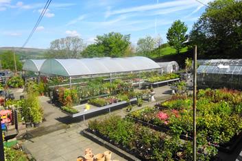 Park Farm Shop and Tearoom
